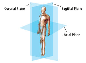 anatomic_planes_illus006.png